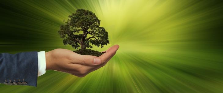 sustainability-3303398_1920