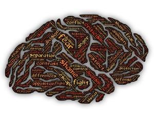 mind-2176565_1920