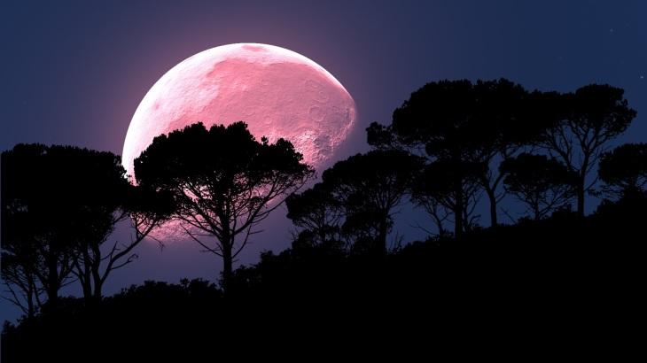moon-2238023
